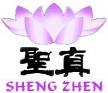 shengzhen logo