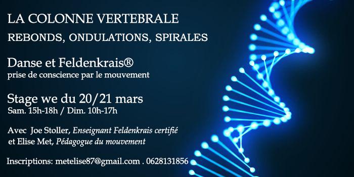 """Stage Danse et Feldenkrais """"Colonne vertébrale : rebonds, ondulations et spirales."""" avec Elise Met et Joe Stoller 20/21 Mars 2021GRENOBLE."""